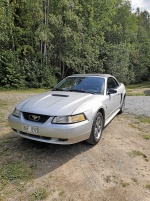 Ford Mustang Cab V6