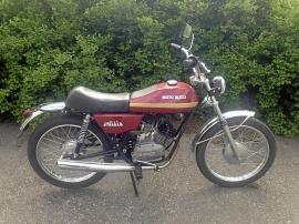 Moto Guzzi Nibblio
