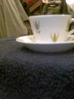 Gustavsberg kopp och fat lotus Stig Lindberg