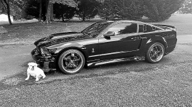 Ford Mustang ELEANOR GT V8 2006