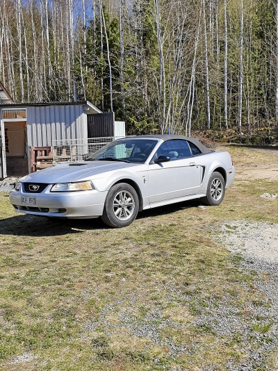 Ford Mustang V6 cab