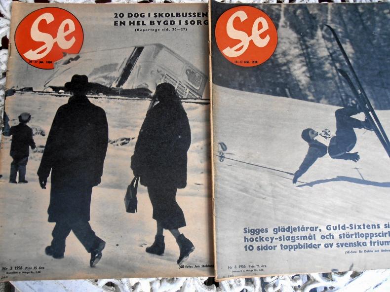 Tidningen SE