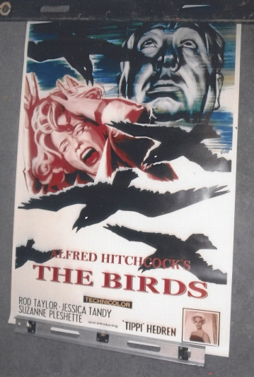 Alfred Hitchcocks The Birds