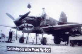 P40, Am. stridsflyg 1944